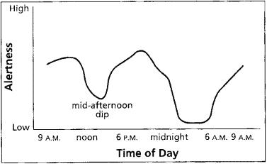 alertness graph