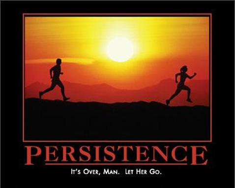 Persistence at Despair.com
