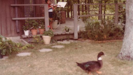 noa & duck
