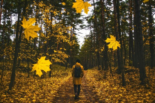 """Stressed, Anxious, and Feeling a Little Burned Out? Here's How an """"Awe Walk"""" Could Help."""